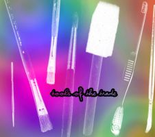 Tools of the Trade by christalynnebrushes