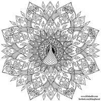 Hand-Drawn Peacock Mandala Colouring Page by WelshPixie