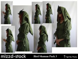 Bird Shaman Pack 3 by mizzd-stock