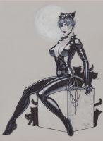 Catwoman SDCC by MichaelDooney