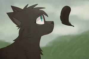 a crow's feather by demolasion