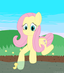 CE: Fluttershy by Rainbow-X-Ambipom