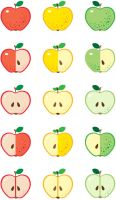 Apples vector by jkBunny