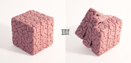 Rubiks Cube Brain Sculpt by freeny