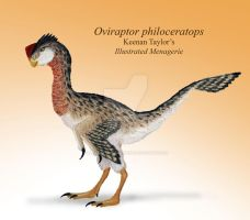 Oviraptor philoceratops by IllustratedMenagerie