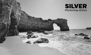 Silver Photoshop Action by loadedlandscapes