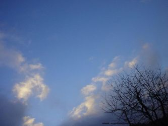 X-Mas day sky shot IV by Arnax