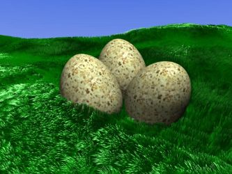 Dinosaur Eggs by suricata5