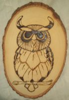 Wood Burned Owl by unanimatedew