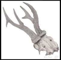 Prongs Sketch by JenTheThirdGal