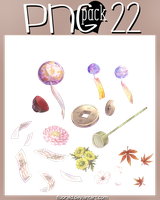 PNG_PACK#22 by Fluorald