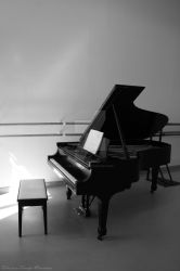 The Steinway by ElisitaGayle