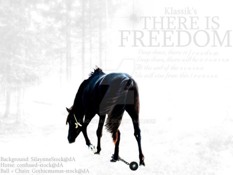 There Is Freedom by Go-Insane