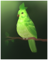 Pearbird by Gintesa
