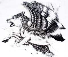 On wolf's wings by paleWOLF