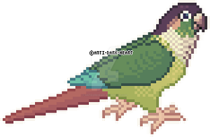Jenny Conure Sprite - Commission by AntiDarkHeart