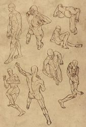 Hard perspective anatomy references for males by DocWendigo
