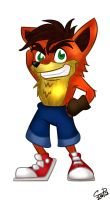 Crash Bandicoot by Hotaru-oz