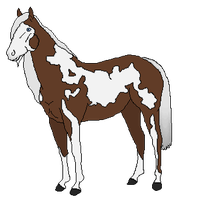 Bouncy Horse (Run off) Extra Horsie by Adoption-R-Us