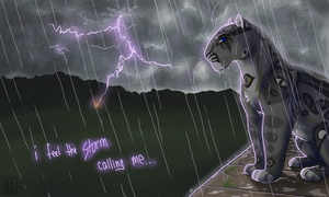 Feel the Storm by OneLifeRemaining