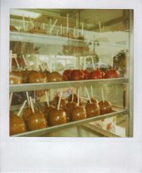 Candied Apples by rustymitchell