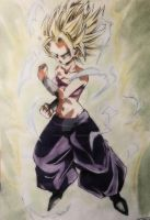 Caulifla SSJ 2 by Unmei-no-kaioshin