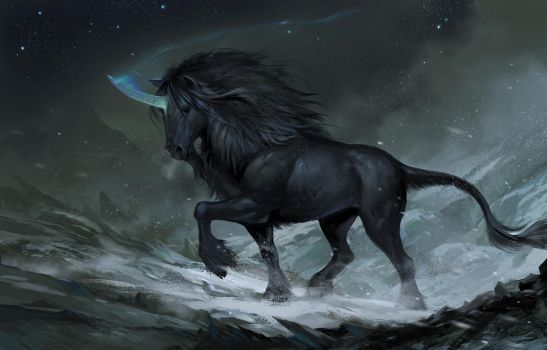 Black Mountain Unicorn 2 by sandara