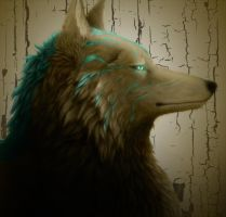 Wolf by Pittyputty