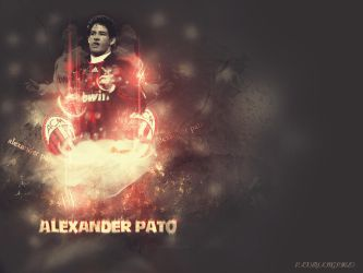 ALEXANDER PATO by KING-PIRLO