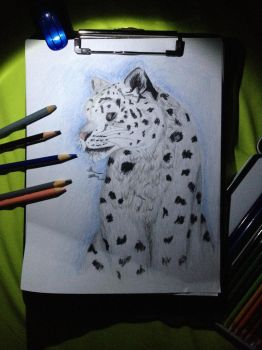 Mother's Day2- Snow leopard by OPENINGART