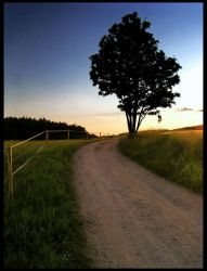The Road by borek2