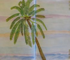 Coconut Palm by Toadinthegarden