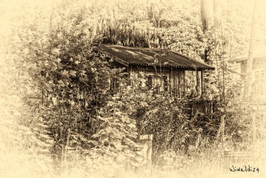 The small house by wiwaldi24