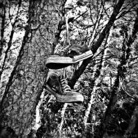 Sneakers on the Tree by MarinaCoric