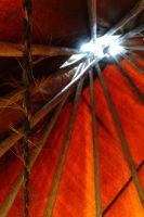 Looking Up Inside a Tipi 06/04/2016 1:31PM by Crigger