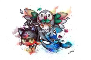 Pokemon Starters : Rowlet, Litten, and Popplio