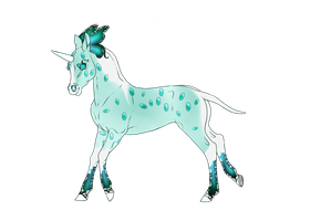I207 Foal Design by Lemonegrass