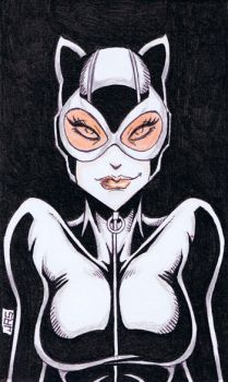 Catwoman [35a] by JRS-ART