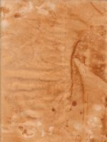 Weathered Paper 10 by DanteSangreal