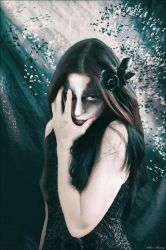 Black Rose by conservancy