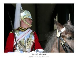 Royal Guard by photocell