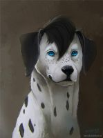 Commission:Dalmatian by vagab0nda