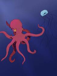 Octopus by teuthidaarchiteuthis