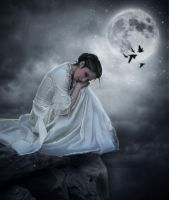 :: Night under the moon Composer :: by SV-Blackart