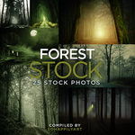 Forest Stock 003 by sohappilyart