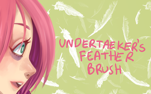 [PTS] FEATHER BRUSH by HONEYxPOISON