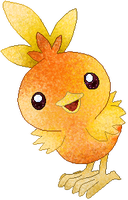 Torchic coloured by Sulfura