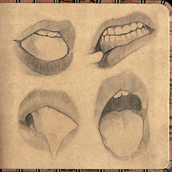 Digital Sketchbook Study 02 Mouth Preview 2 by GoldenTar
