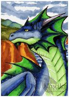 Blue Dragon ACEO by Naseilen