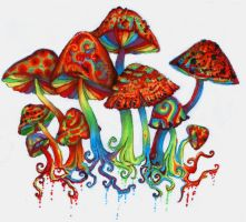 Shroomz by Slaughterose